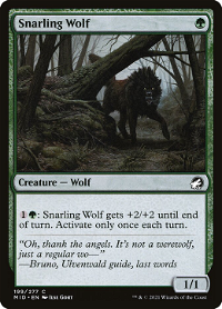 Snarling Wolf image