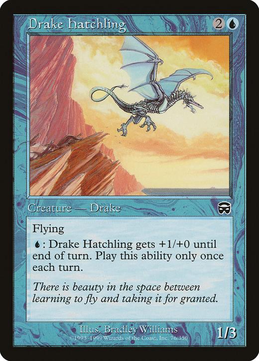 Drake Hatchling image
