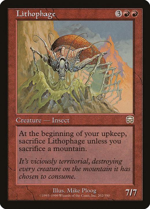 Lithophage image