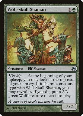 Wolf-Skull Shaman image