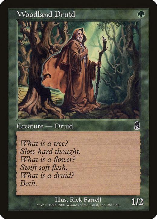 Woodland Druid image
