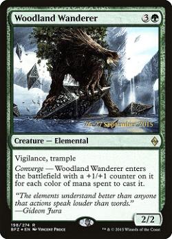 Woodland Wanderer image