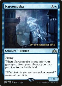 Narcomoeba image