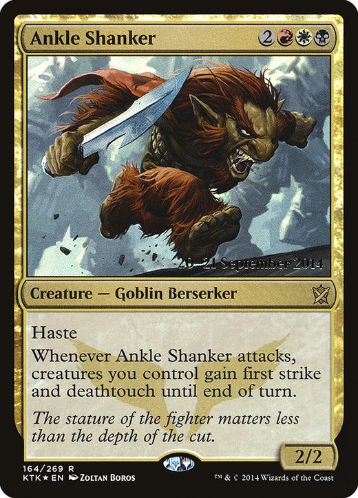 Ankle Shanker image