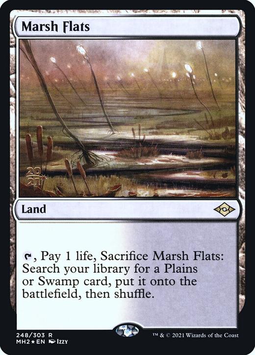 Marsh Flats image