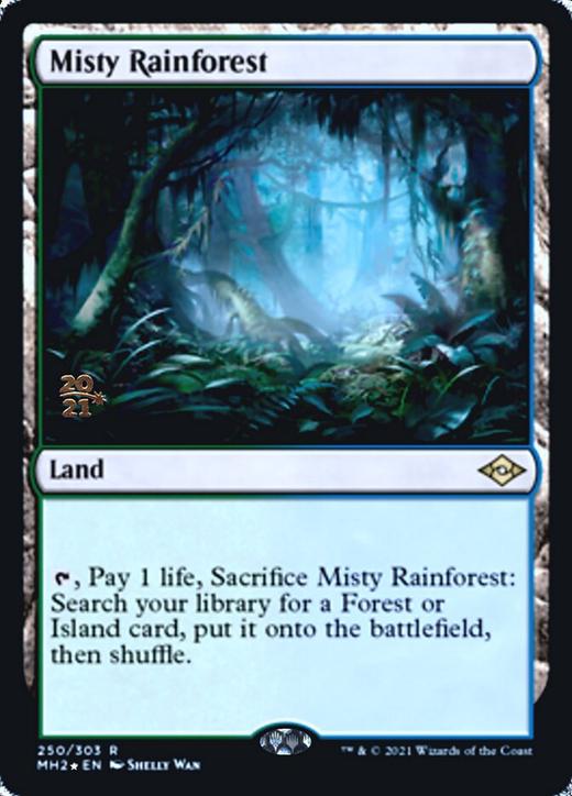 Misty Rainforest image