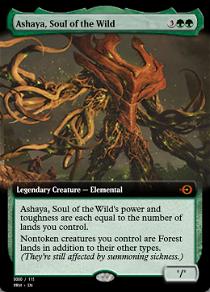Ashaya, Soul of the Wild image