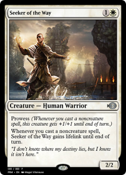 Seeker of the Way image