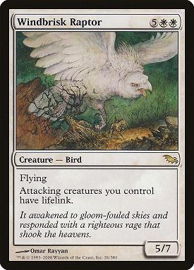 Windbrisk Raptor image