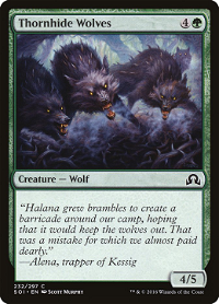 Thornhide Wolves image