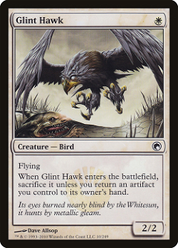Glint Hawk image