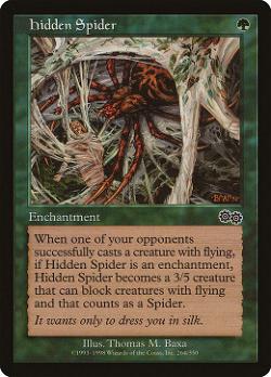 Hidden Spider image