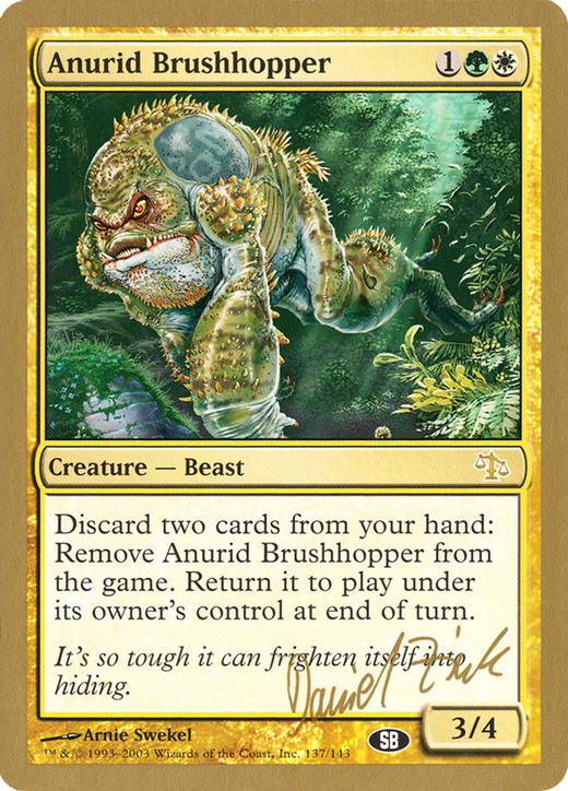 Anurid Brushhopper image