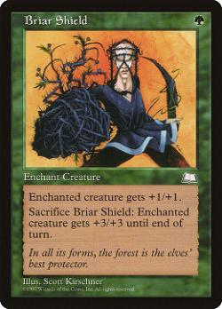 Briar Shield image