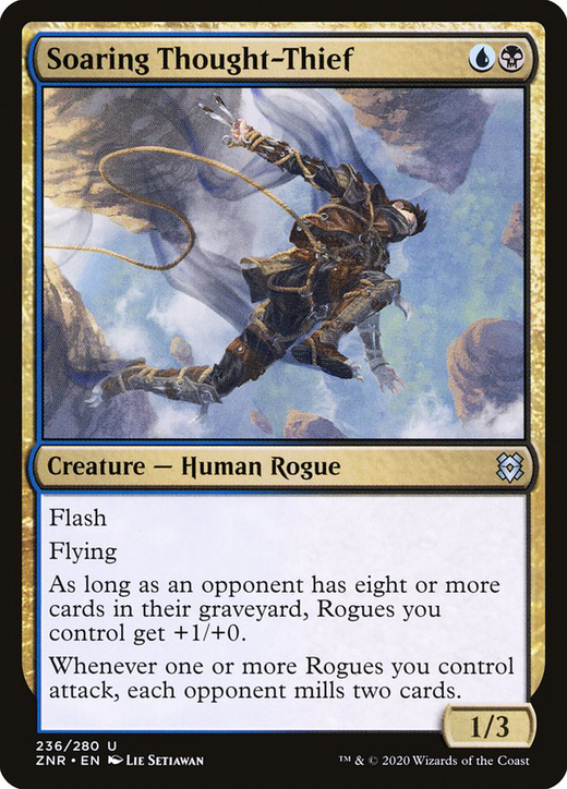 Soaring Thought-Thief image