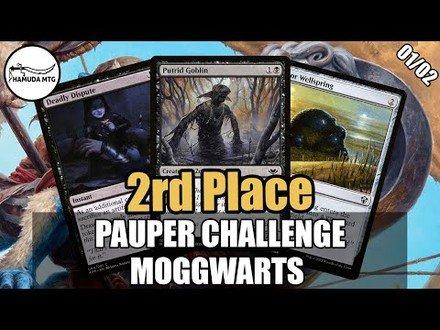 MOGGWARTS - PAUPER CHALLENGE- 11/09